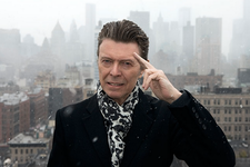bowie resize